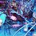 #1195 Corsair denizens