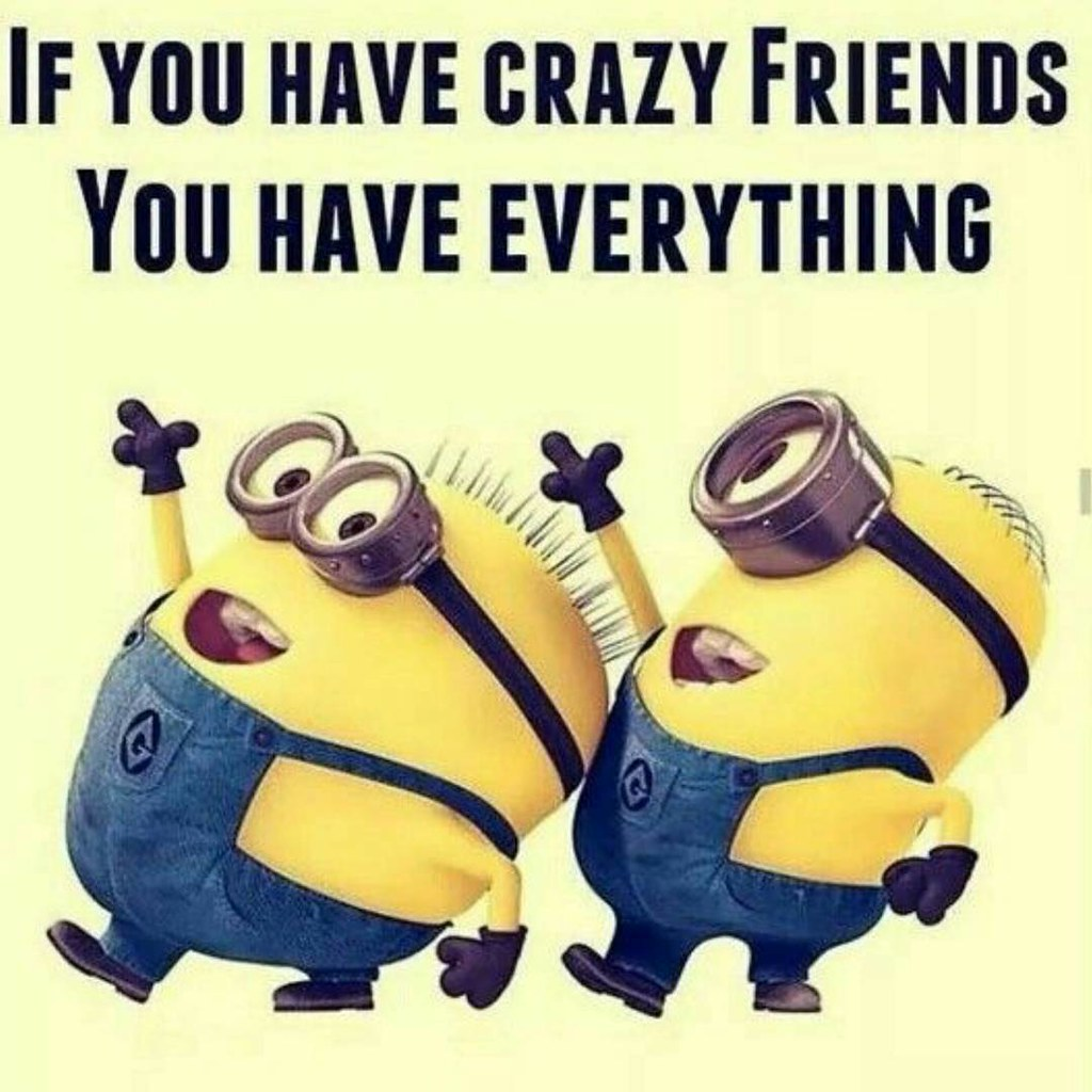 Funny Friendship Quotes All Sizes  Crazy Friends Crazy Friends Love Joy Happiness