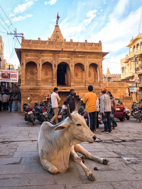 Street in Jaisalmer Fort, India ジャイサルメール、フォートの中の道にて