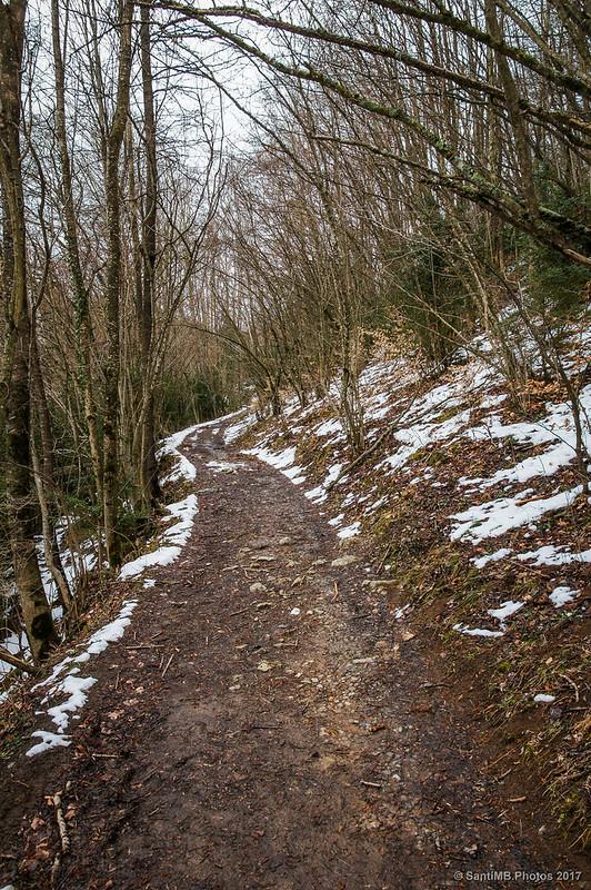 Camino al Coll de la Creueta