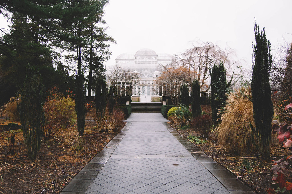 New York Botanical Garden in December
