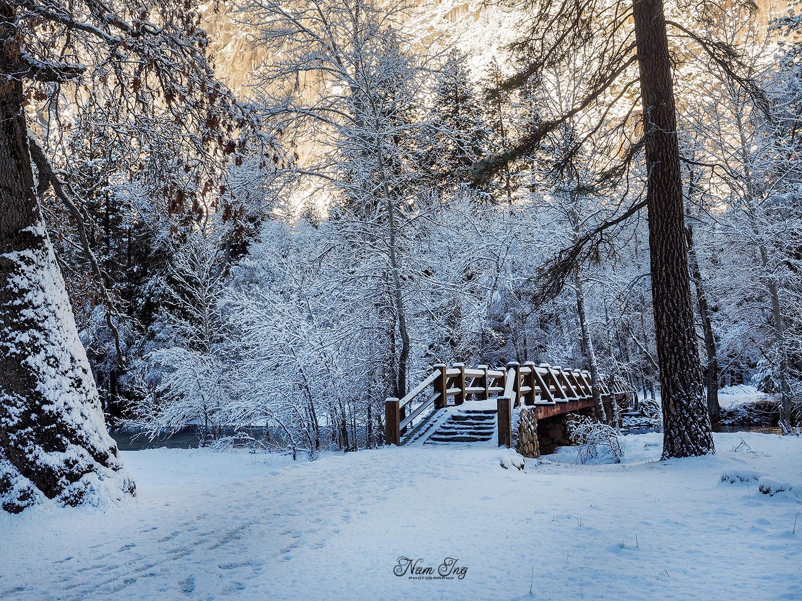 Noël au Yosemite 31749416952_8968d2803f_h