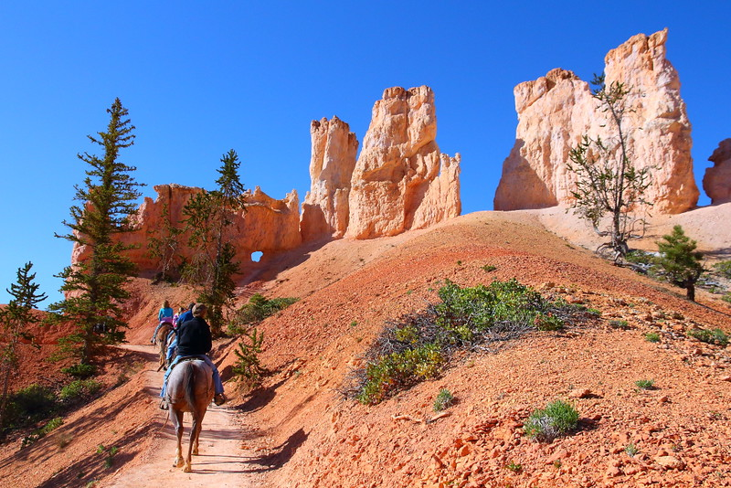 IMG_4603 Mule Ride, Bryce Canyon National Park