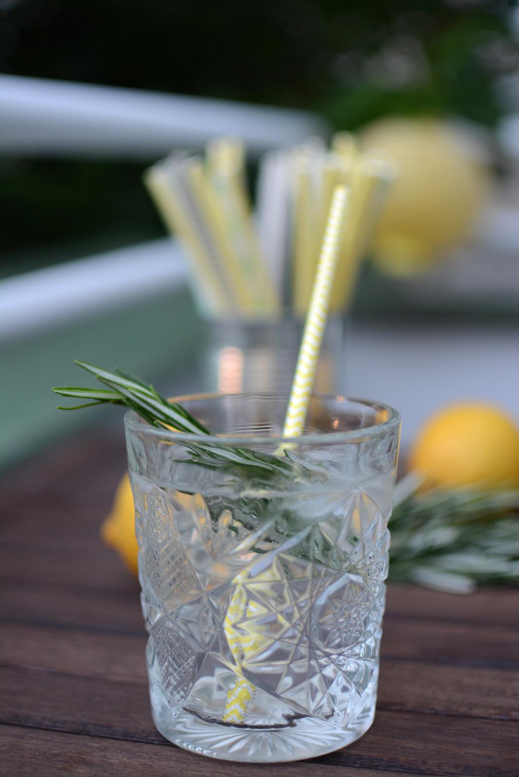Rosmarin-Gin-Drink
