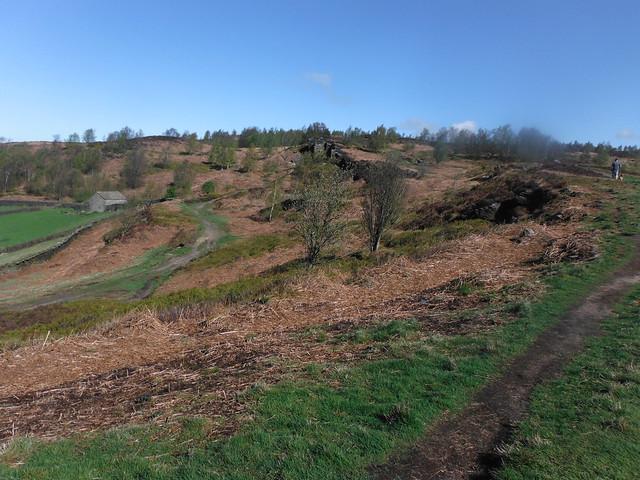 Farnhill Moor 1