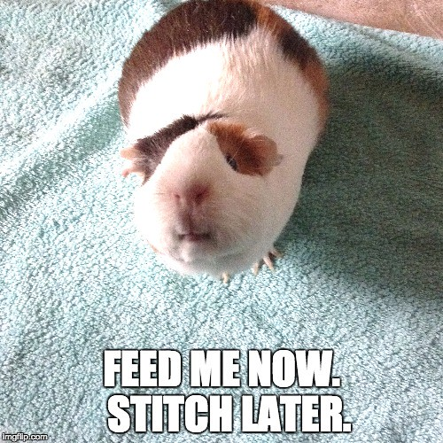 feed me now. stitch later.
