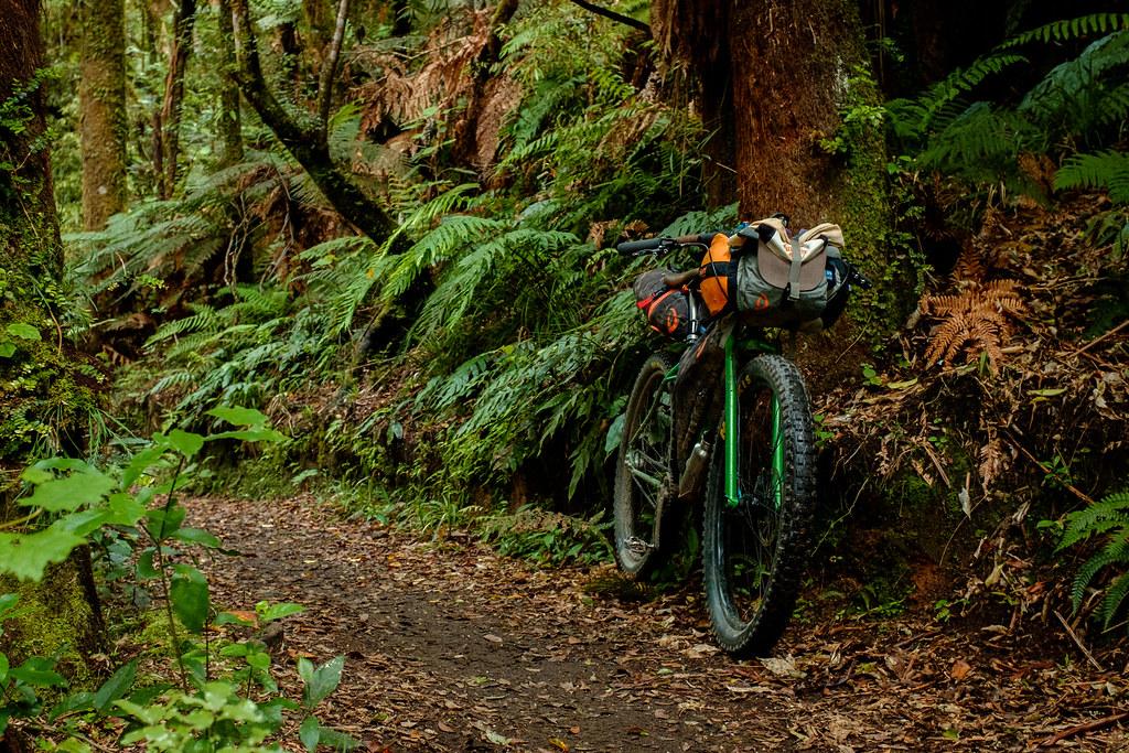 170113_Rotorua to Nat Park -60