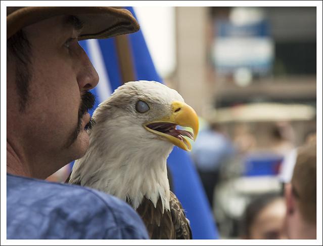 Proud Eagle 2