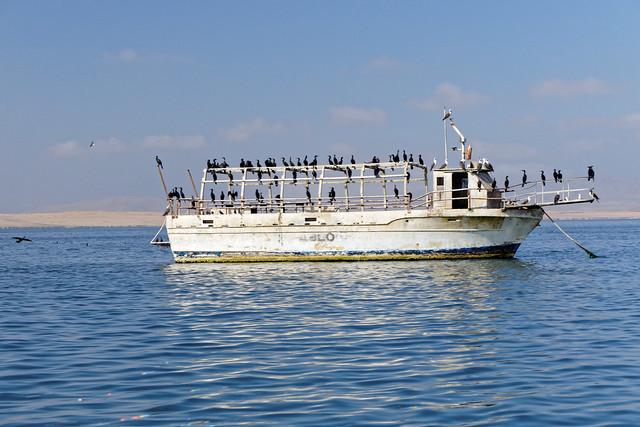 Zatoka Paracas