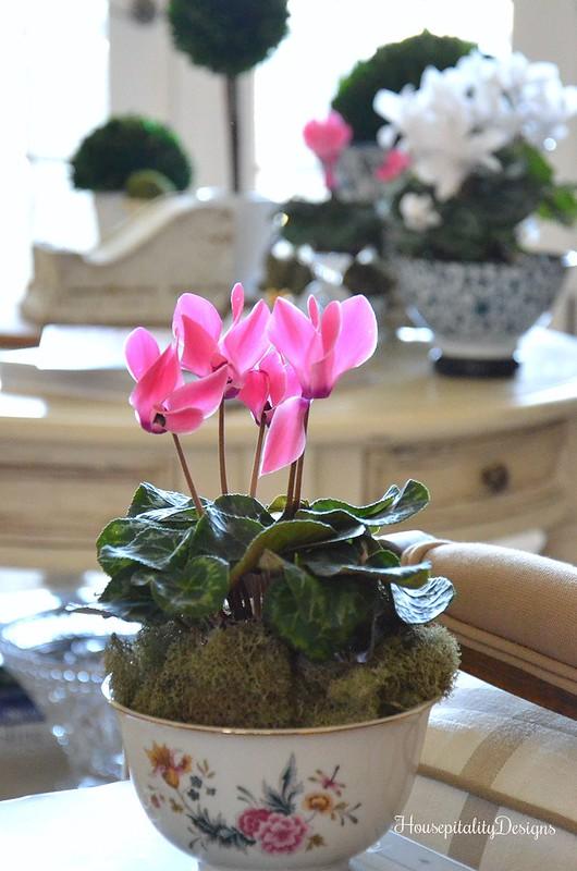 Pink Cyclamen-Avon Porcelain Bowl-Housepitality Designs