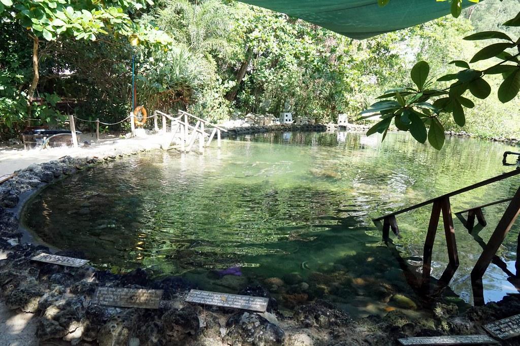 Andaman langkawi - coral nursery-021