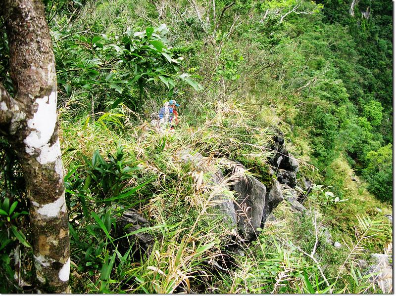 箭竹、亂石、瘦稜區 2