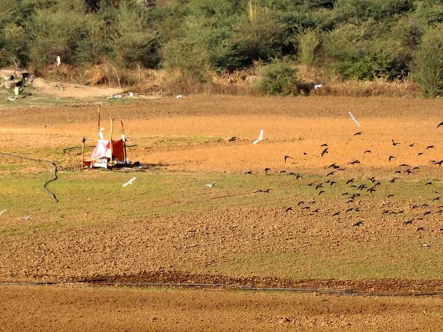 सूखी रामगढ़ झील