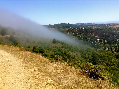 Fog over Miwok Trail