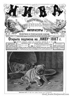 Niva 1887_0509