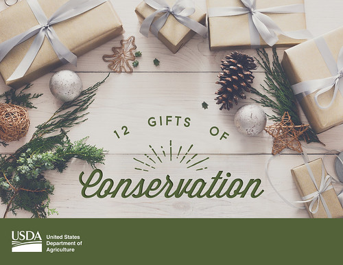 12 Gifts of Conservation graphic