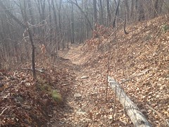 Upper Old Winding Stair Gap Road