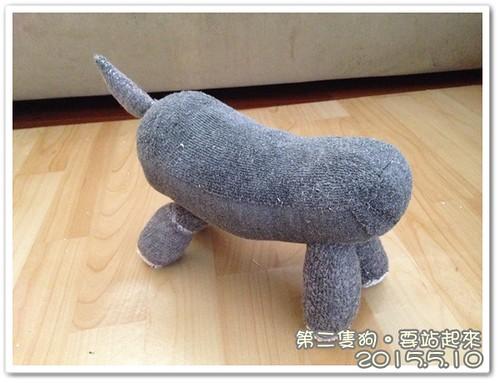0510-開始做狗狗 (3)