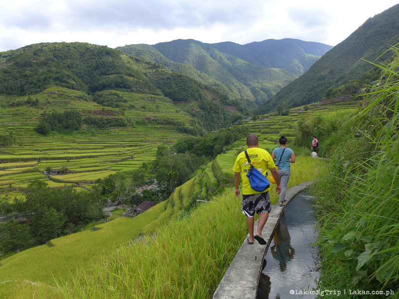 Hapao Rice Terraces in Hungduan, Ifugao, Philippines