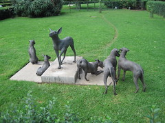 One hairless dog statue