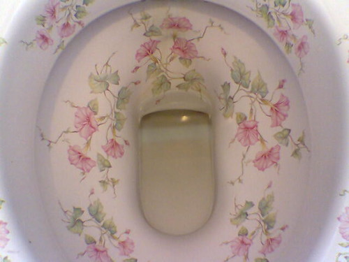 Could You Be The Most Beautiful Toilet In The World Coul