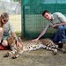 Me with Cheetah