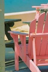 Pink Chair | by Wananga