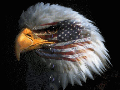 Image result for eagle with tears