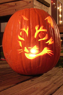 Cat Pumpkin | by rhombitruncated