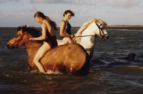2 Girls 2 Horses 1 Dog In The Ocean