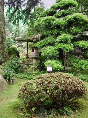 Japan Garden Tea Room