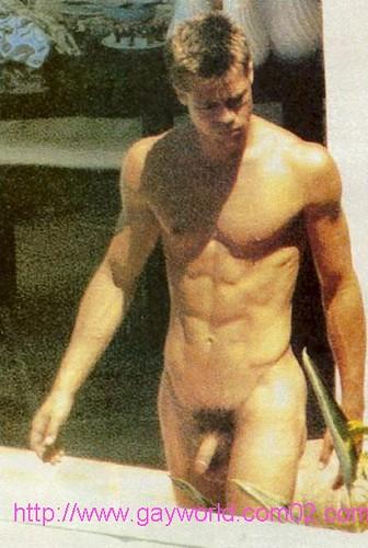 Brad Pitt Big Penis 110