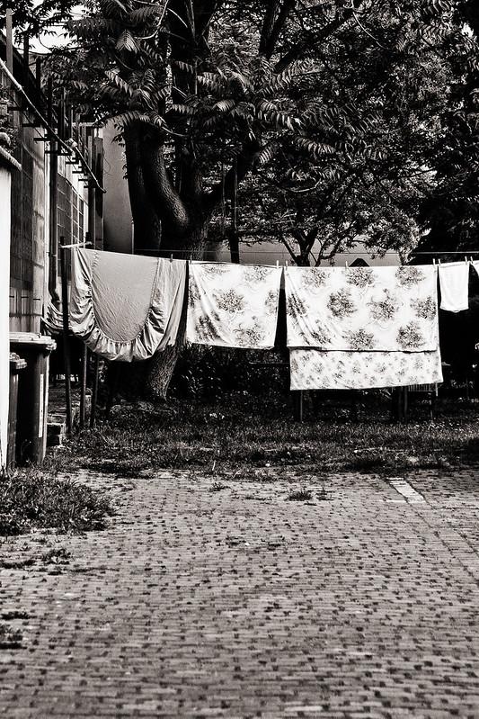 laundry day // dresden neustadt