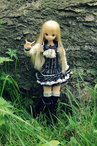 Kiseki ♥