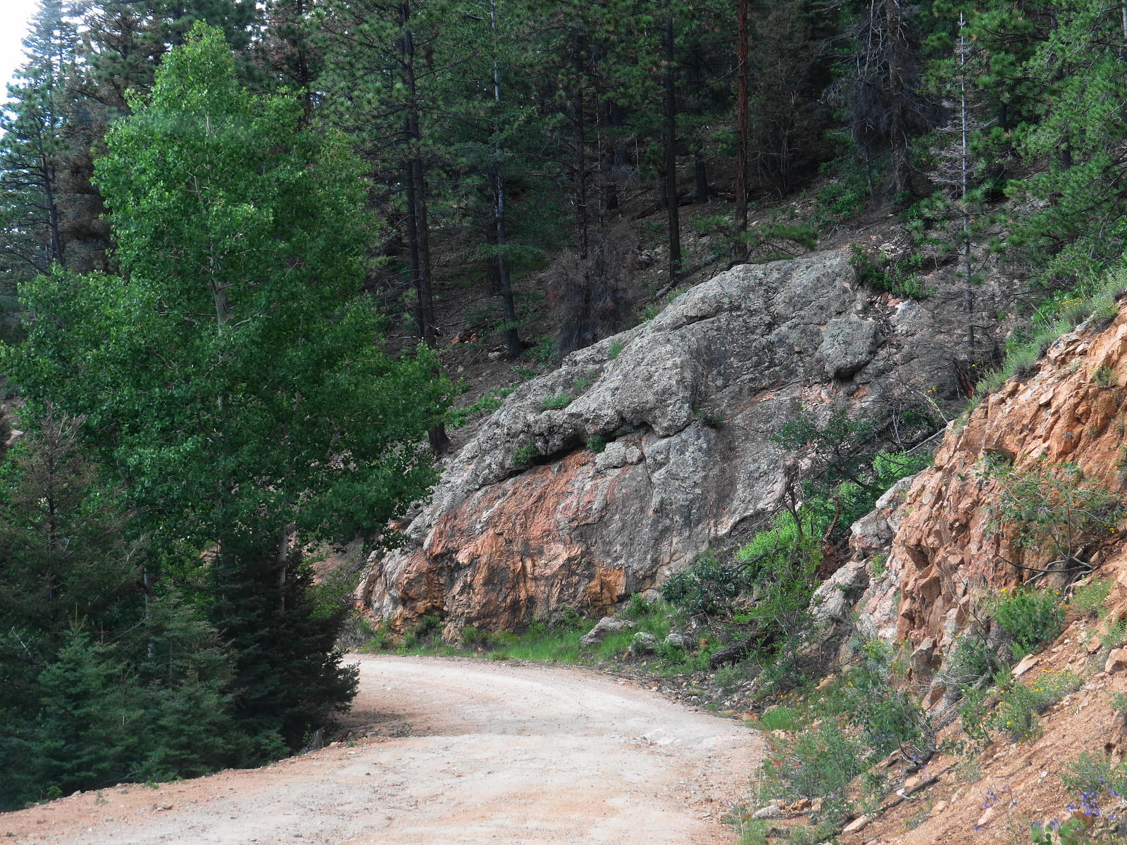 US Forest Service Road 102, Santa Fe NF, NM