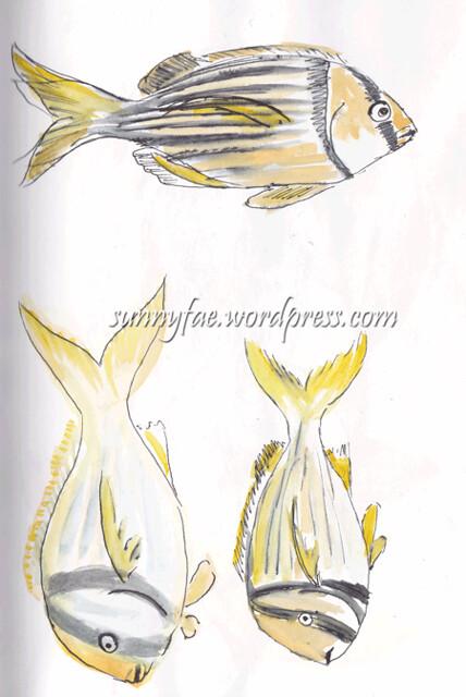 fish sketch 2