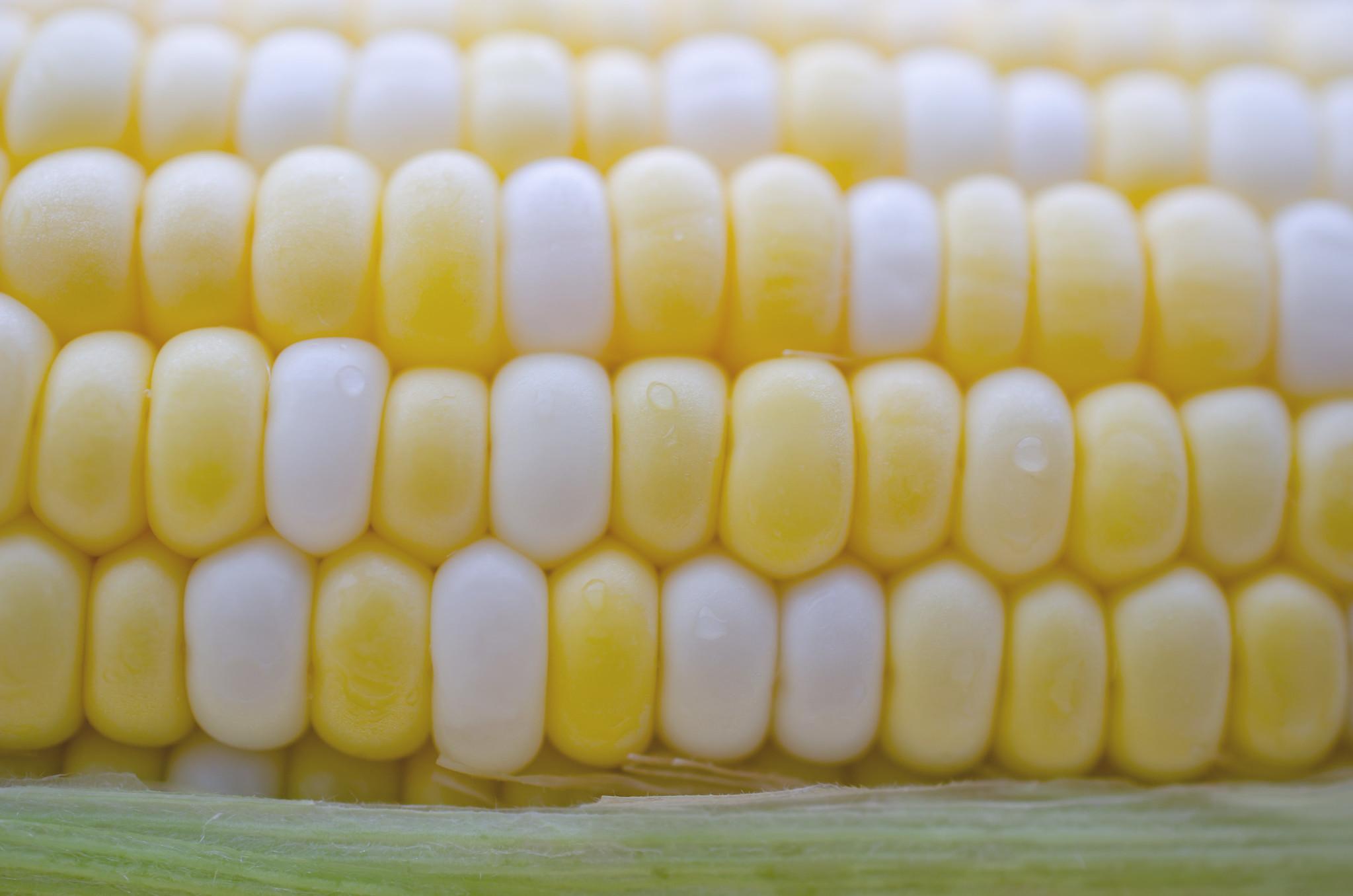 165   365 Yellow