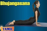 Bhujangasana For Cervical Spondylosis – Reduce Back Pain – Treatment, Tips & Cure in Tamil