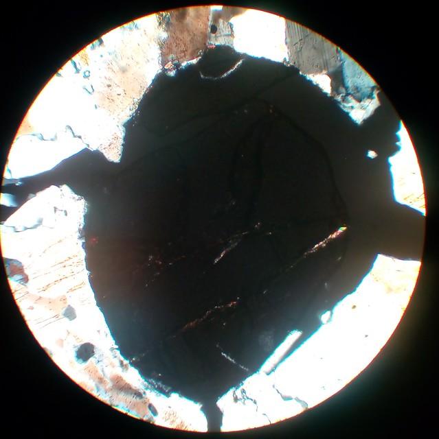 Garnet (30 µm thin section, XPL)