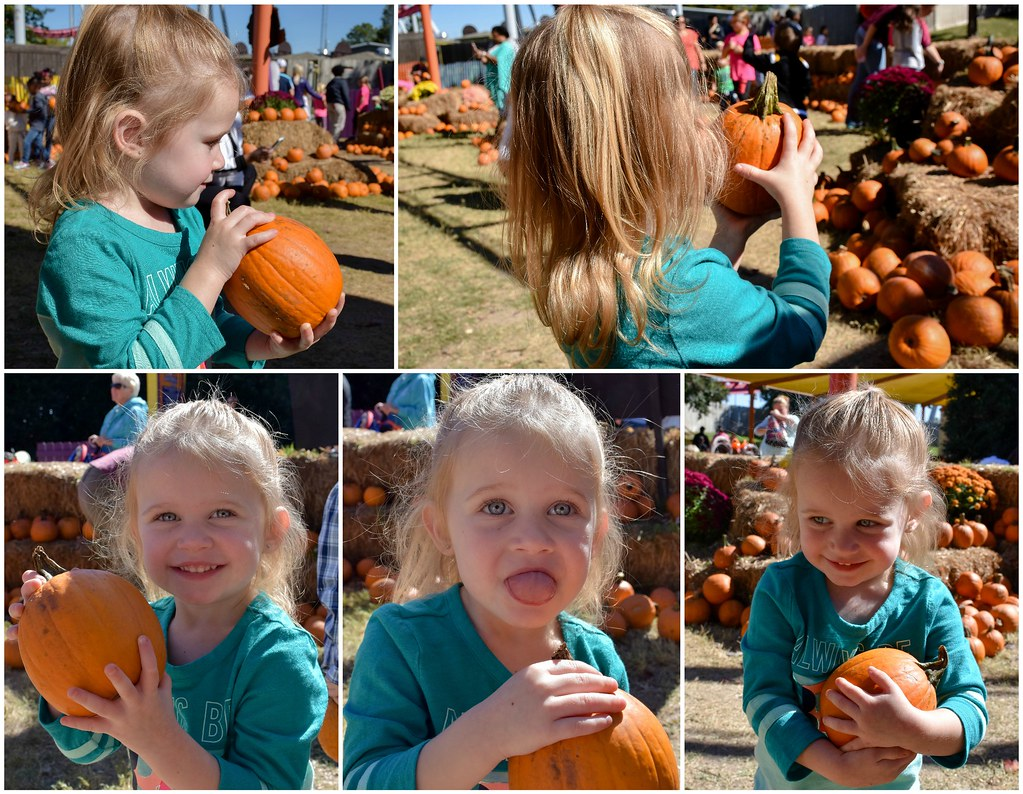 ellie and her pumpkin