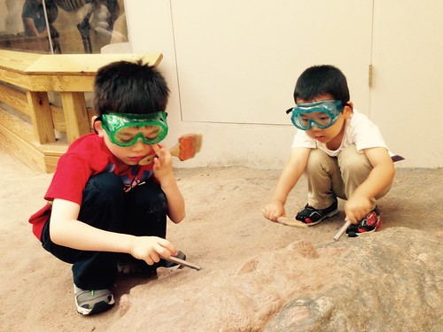 Paleontologist dig at the Carnegie Museum of Natural History