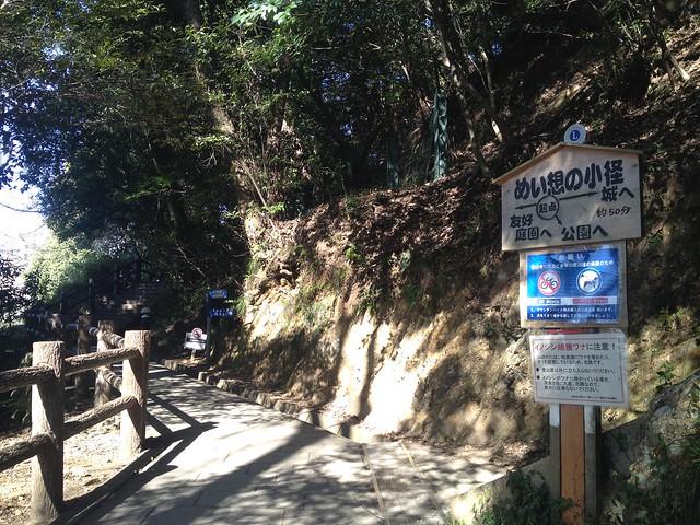 金華山 めい想の小径 日中友好公園・金華山分岐