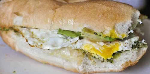 EggSammy2