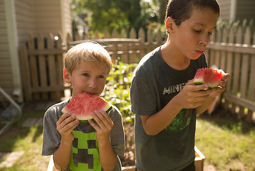 watermelon in backyard 2-blog | by -kimcunningham