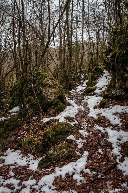 Camino del Torrent de la Pedrera