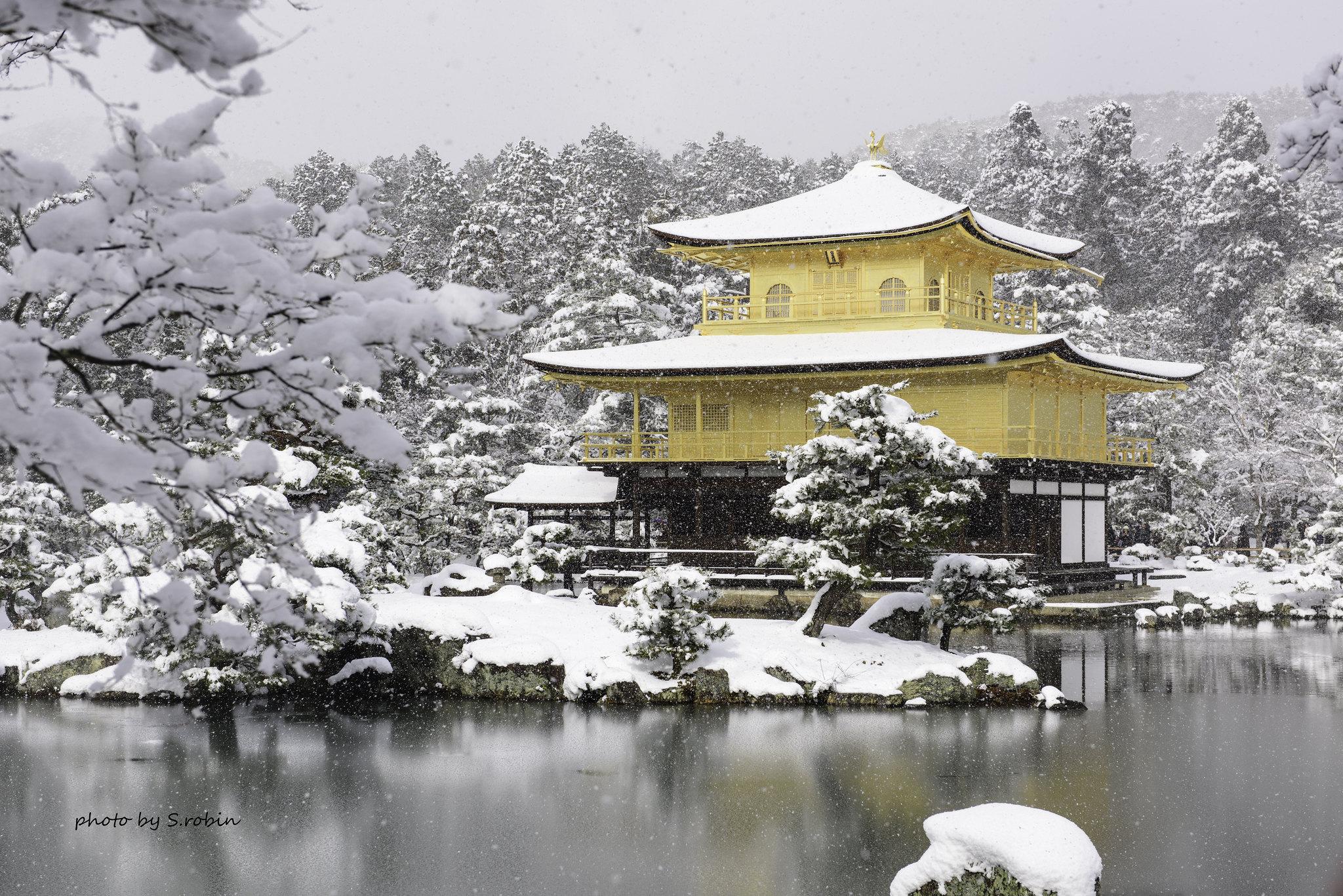 Beautiful Snowy Kinkaku-ji