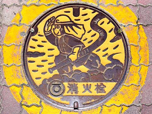 Tenryu Shizuoka, manhole cover 2 (静岡県天竜市のマンホール2)
