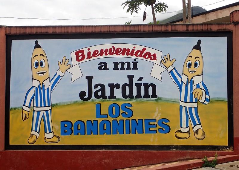 """""""Jadrín los Bananines."""""""