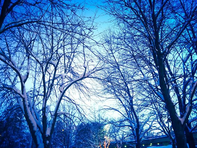 WintrySnowyFinland-1040699.jpg,P1040679.jpgWinterSNowyViewHelsinkiFInlandWindow, winter, talvi, helsinki, suomi, finland, luonto, nature, aamusta iltaa, dawn to dusk, tammikuu, january, sää, weather, näkymä, view, landscape, maisema, kattojen ylle, rooftops, ilta, evening, sunset, sundown, blue light, sininen valo, lumiset puut,