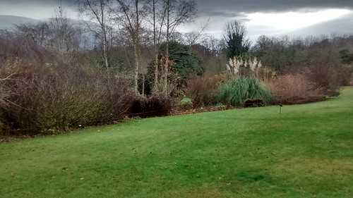 Bradley Hall Gardens Crawcrook Dec 16 (1)
